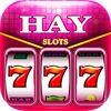 Hay Slots