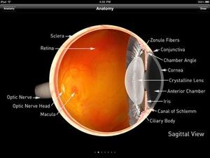 Screenshot Sight Selector Lite on iPad