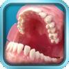 Smart Dental Chart
