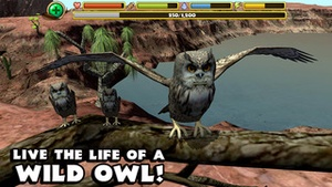 Screenshot Owl Simulator on iPhone