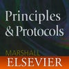 On Call Principles and Protocols