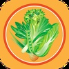 7 Day Vegan Challenge & Recipes