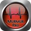 Heart Murmur Pro