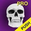 Halloween Countdown Pro w