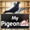 My Pigeon Loft HD