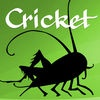 Cricket Magazine: stories, comics, poems, and fun activities for kids and preteens