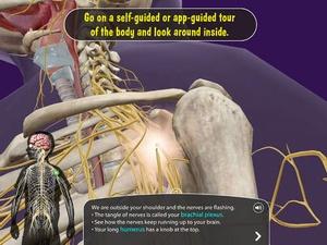 Screenshot My Incredible Body on iPad