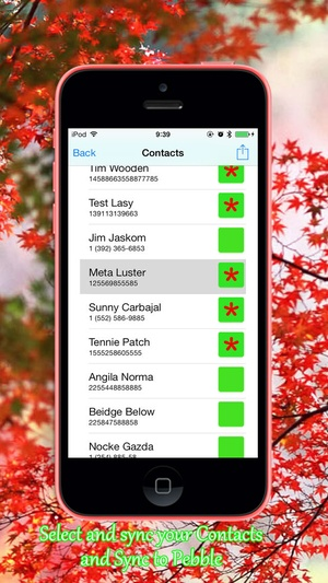 Screenshot Contacts for Pebble Smartwatch on iPhone