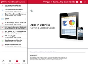 Screenshot MobileIron Mobile@Work™ Client on iPad