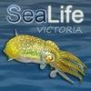Sea Life Victoria