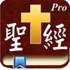 Handy Bible Chinese Pro