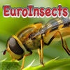 EuroInsects