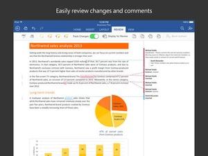 Screenshot Microsoft Word on iPad
