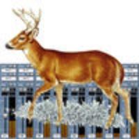 Deer Call Mixer