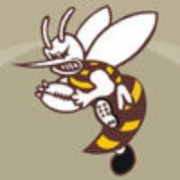 Aspley Hornet