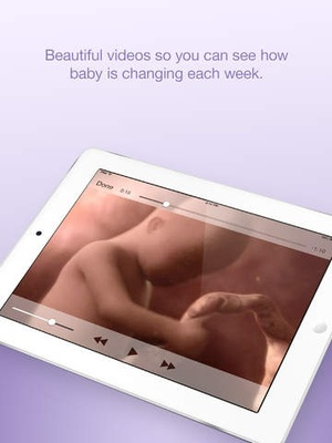 Screenshot Pregnancy & Baby | What to Expect on iPad