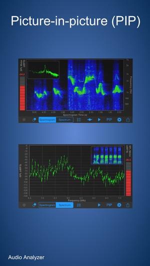 Screenshot Audio Analyzer on iPhone