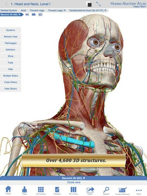 Screenshot Human Anatomy Atlas on iPad