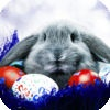 Stories of the Easter Bunny
