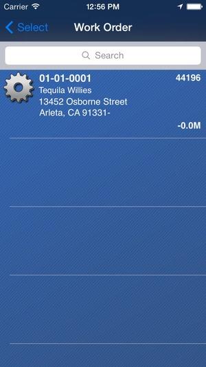 Screenshot SIMS Pocket on iPhone