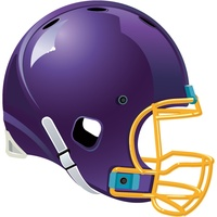 Minnesota Vikings 2010 News and Rumors