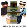 Mineskins Pro