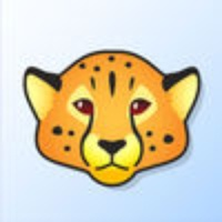 Cheetah Credit Card Terminal