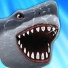 Shark Adventure