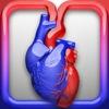 HeartPhys