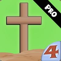 Life of Jesus: The Cross Pro