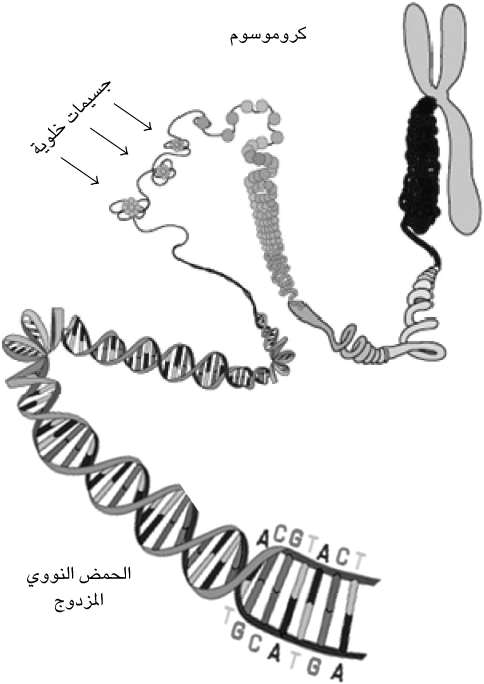 fig67