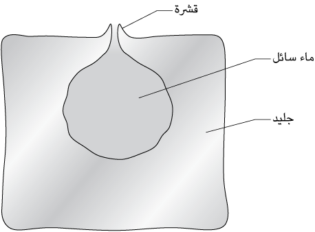fig108
