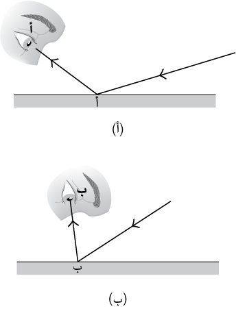 fig164