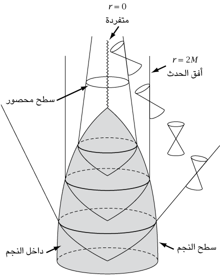 fig24