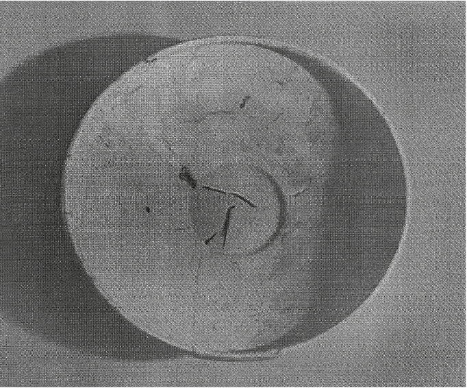 fig107