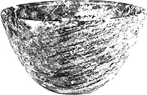 fig219