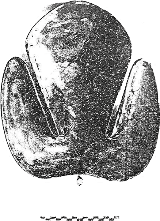 fig371
