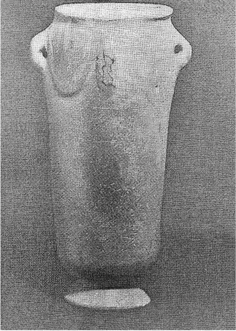 fig48