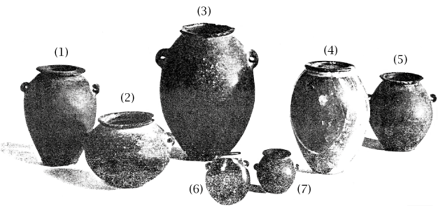 fig56