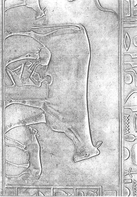fig650
