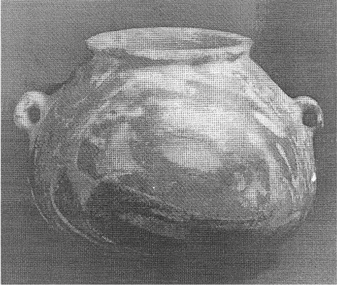 fig96