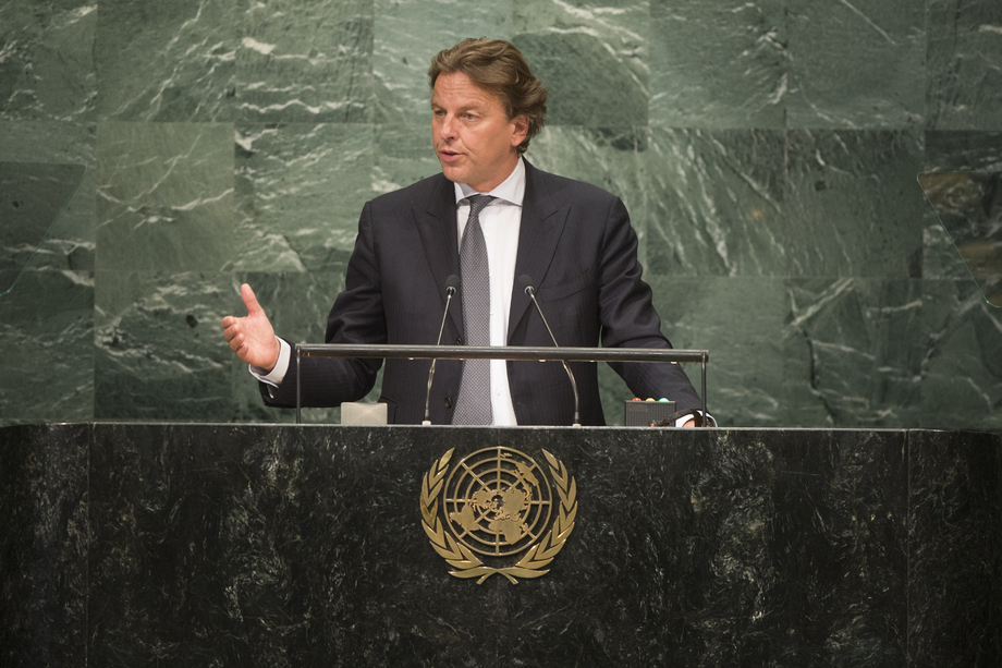 H.E. Mr.Albert Koenders