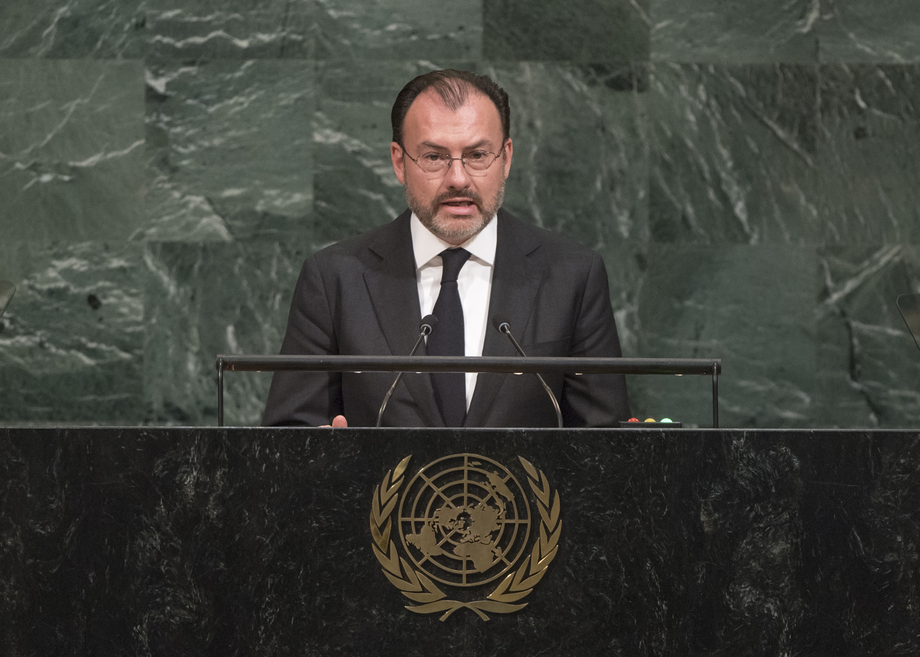 H.E. Mr.Luis Videgaray Caso