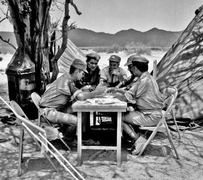 United Nations Yemen Observation Mission (UNYOM)