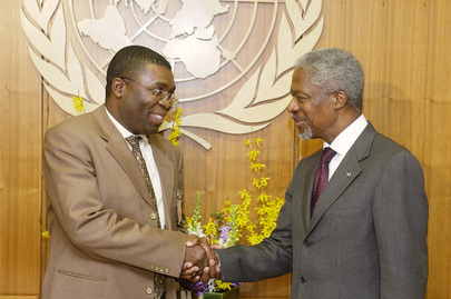 Secretary-General Meets with Minister for Provincial Affairs and Constitutional Development of Republic of South Africa