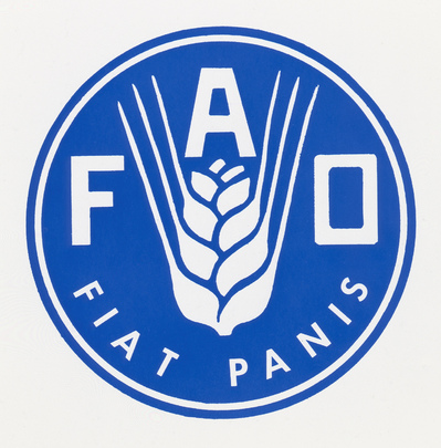 Image result for fao logo