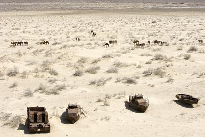 Recession of Aral Sea Dries Up Uzbek Port City