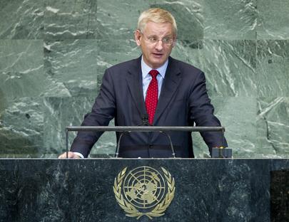 H.E. Mr.Carl Bildt