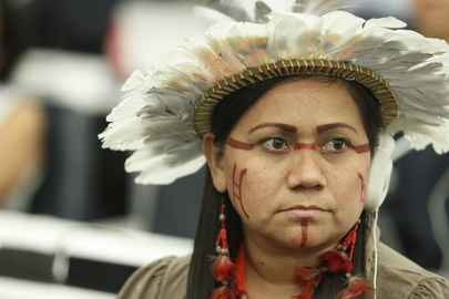 Scenes from the First World Conference on Indigenous Peoples