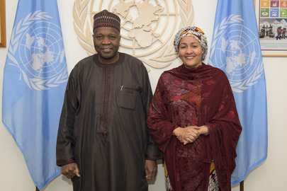Deputy Secretary-General Meets State Governor of Gombe, Nigeria